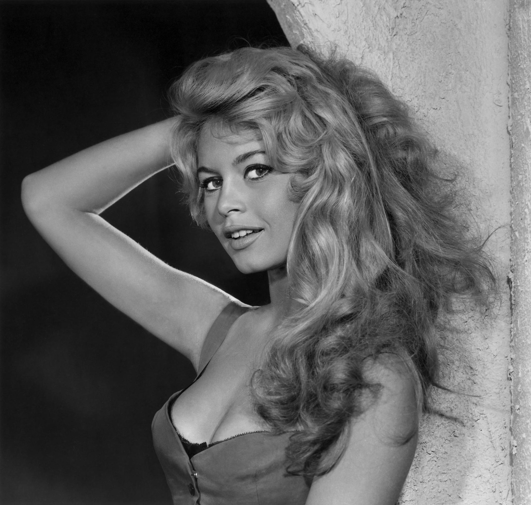 Brigitte Bardot Nude Photos 79