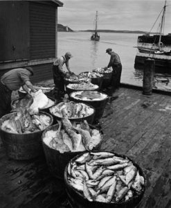 Fishermen, Halifax