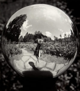 The Artist's Mirror
