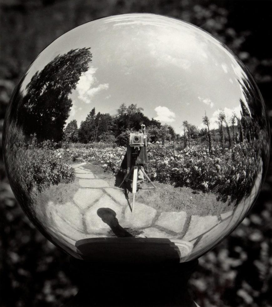 The Artist's Mirror: Self Portraits