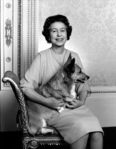 Queen Elizabeth II's Last Corgi Dies